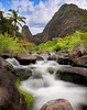 Tropical Paradise - Iao Valley, Maui, Hawaii
