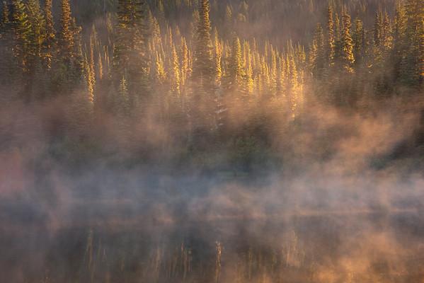 Misty Morning On The Lake As Sun Appears - Mount Rainier National Park, WA