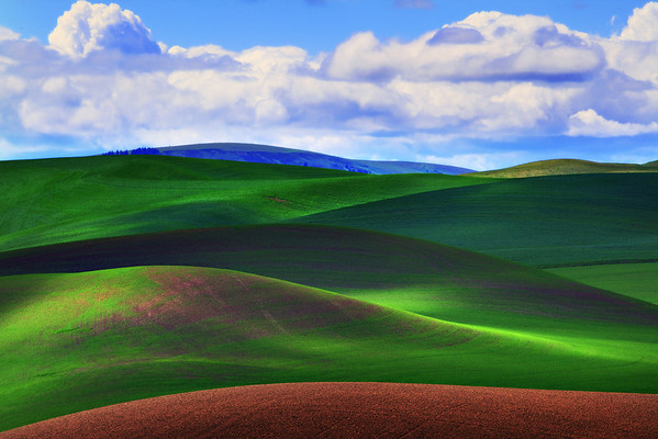 Rolling Light And Shadow - The Palouse, Washington