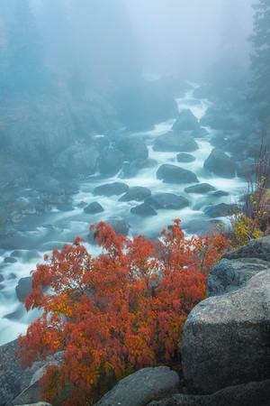 Morning Of Fog Along The River - Leavenworth, Central Washington, WA