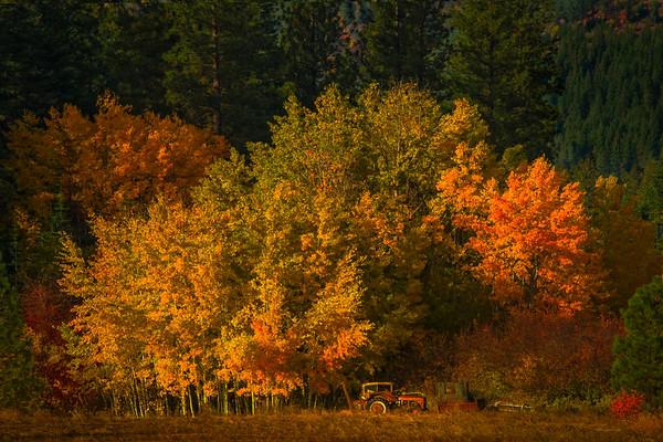 Sunset Light On The Simple Life - Leavenworth, Central Washington, WA