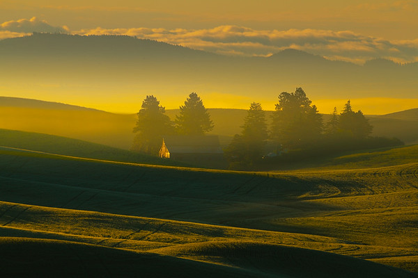 Morning Mist In The Lower Valley Palouse Farms - Eid Road, Palouse, Idaho