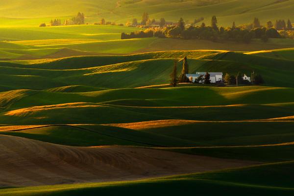 Tucked Away Between The Hills And Light - Tekoa-Farmington, Palouse, WA