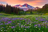 Moments Of Ponder -Indian Henry Hunting Grounds, Mount Rainer National Park, Washington