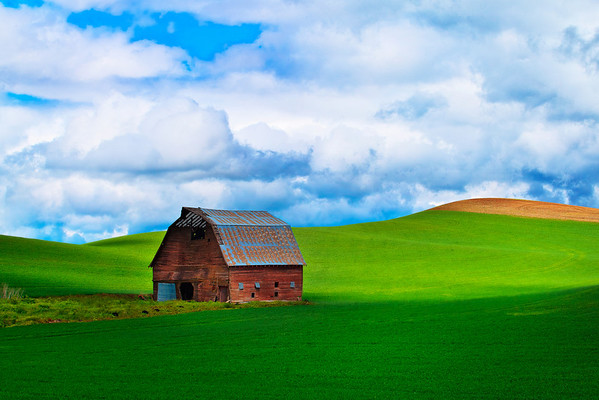 The Last Standing Minutes Left In This Barns Life Before Coming Down - The Palouse,  Washington, Washington