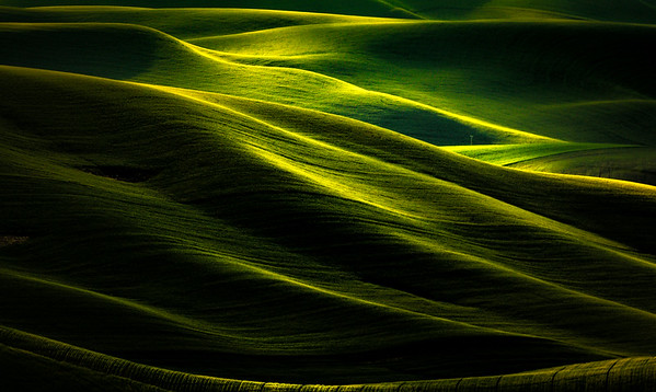 Abstract Look At Light And Shadow In The Palouse - Steptoe Butte State Park, Palouse, WA