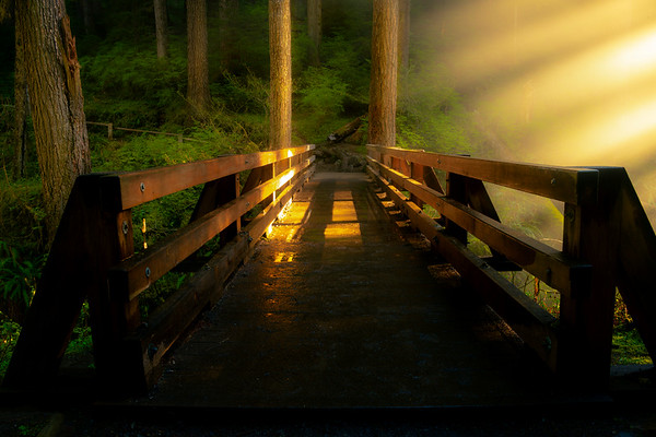 Cross The Sol Duc Bridge Into Lightness Sol Duc Falls, Olympic National Park, WA