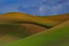 The Shadows And Patterns Of The Palouse - The Palouse, Washington