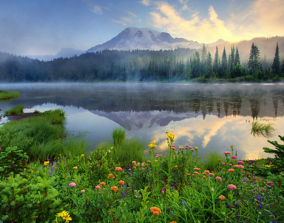 A Mix Of All Kinds - Reflection Lakes - Mount Rainier National Park, Washington