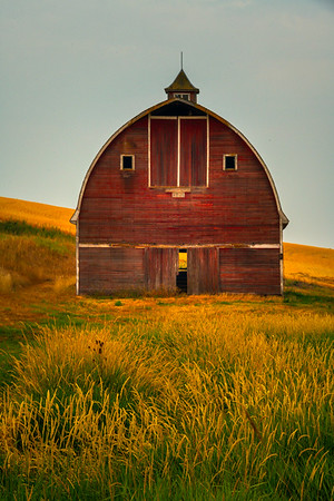 A Dash Of Yellow And Red - Palouse, Eastern Washington