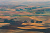 Striations Of Golden Layers - Steptoe Butte State Park, Palouse, Eastern Washington