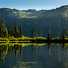 Morning Light Reflecting On Lake And Shoreline Trees - Mount Rainier National Park, WA