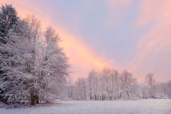 White Winter Sunset - Boston Harbor, Olympia, WA