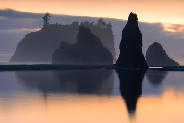 Misty Reflections - Ruby Beach, Olympic National Park, Washington