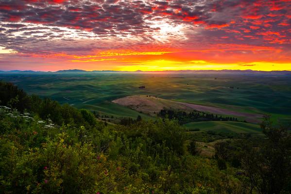Glorious Sunrise From Steptoe Butte - Steptoe Butte State Park, Palouse, WA
