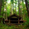 Cabin In The Woods Sol Duc Falls, Olympic National Park, WA