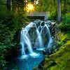 Lower Rainier Waterfall And Moss - Paradise River Waterfall, Mt Rainier NP, WA