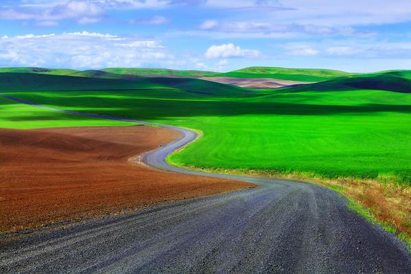 The Long And Windy Road - The Palouse, Washington