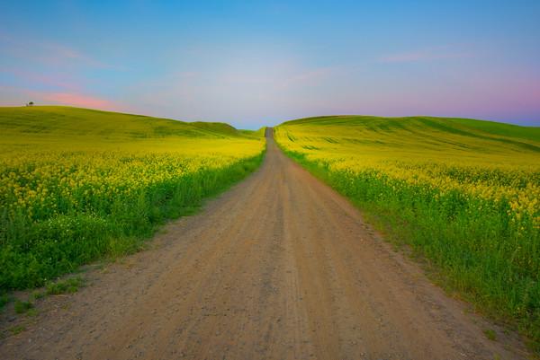 Heading Out Into The Twilight -The Palouse, Eastern Washington And Western Idaho