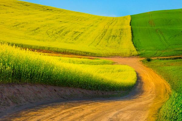 The Rolling Roads Of The Canola Palouse -The Palouse, Eastern Washington And Western Idaho