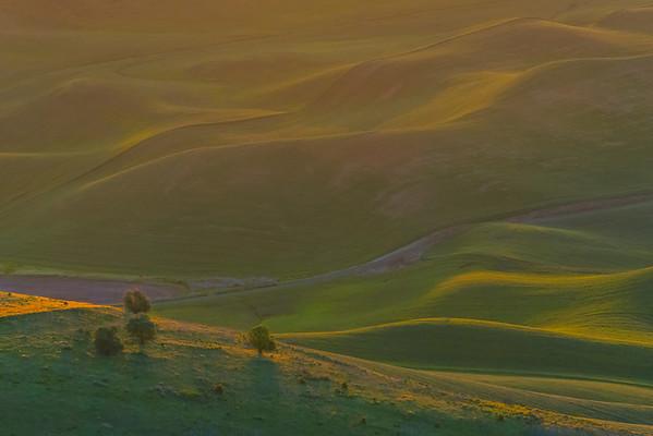The First Golden Light - Steptoe Butte State Park, The Palouse, Eastern Washington