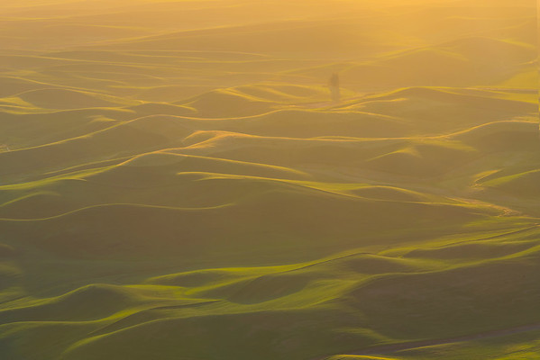 The Hills Are Alive And On Fire - Steptoe Butte State Park, The Palouse, Eastern Washington