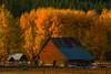 Late Afternoon Light On The Barn - Leavenworth, Central Washington, WA