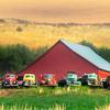 All Lined Up Perfectly Almota Road Trucks - Palouse, Eastern Washington