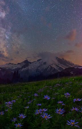 Mt Rainier Under The Stars -Sunrise Side, Mount Rainier National Park, Washington