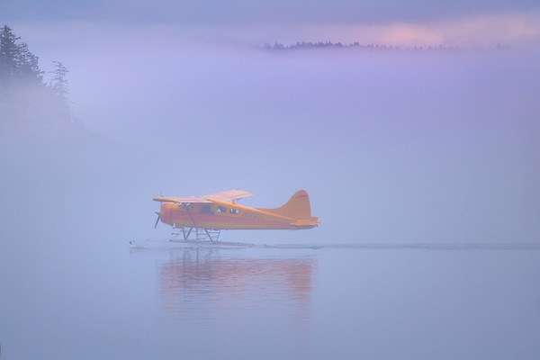 Float Plane Landing In Friday Harbor
