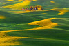 All Tucked Away At The Base Of The Valley - Steptoe Butte State Park, The Palouse, Eastern Washington