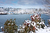 Olympia Marina Inlet In Snow