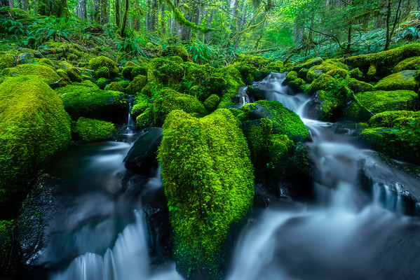 Flowing Lakes Of Cascade Falls Sol Duc Falls, Olympic National Park, WA
