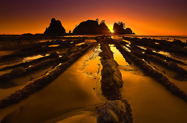 Shi Shi Beach Sunset  -  Olympic National Park, Washington