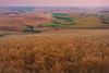 Looking Over The Hills Of Palouse During Twilight - Steptoe Butte State Park, Palouse, Eastern Washington