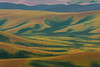 A Mixture Of Pea Soup - Steptoe Butte State Park, Palouse, Eastern Washington