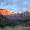 Zion: Sunrise on the Towers of the Virgin