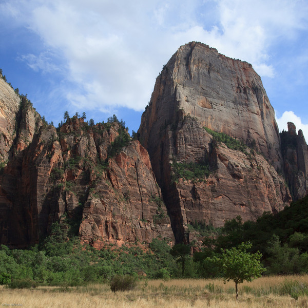 Zion: The Great White Throne