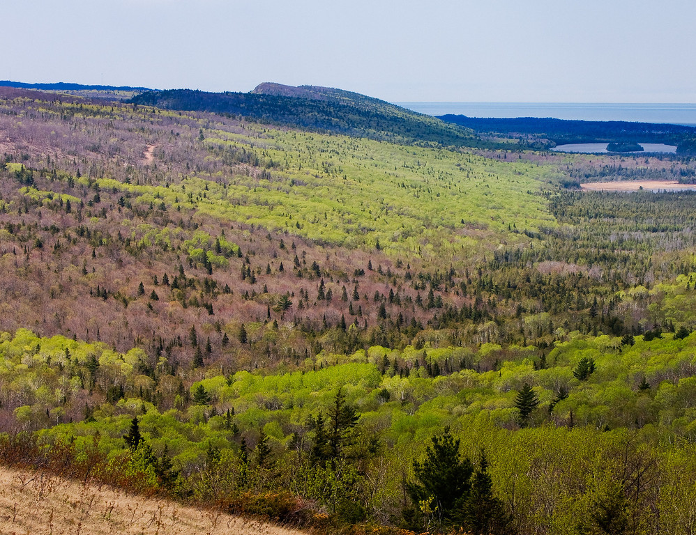 The vast wilderness of the Keweenaw Peninsula (looking west from Brockway Mountain).