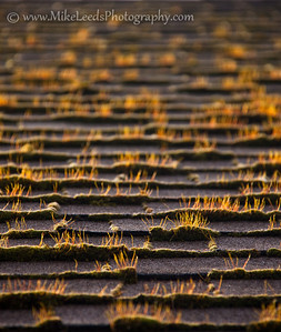 Andy's roof in Hood River Oregon