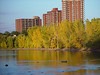 High rise buildings for retirees,abode for their's journey last leg ,lucky they will be,if they will enjoy this Nature's spectacle ,PARC-DE-L'ILE-De-LA-VISITATION.