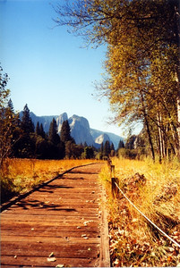 Yosemite 211 (33934903)