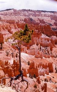 Bryce Canyon 1976