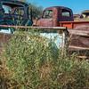 Old Pick ups in the desert