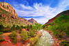 Utah, Zion National Park, Virgin Rive, Landscape,  犹他, 锡安山国家公园 沙漠, 风景