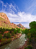 Utah, Zion National Park, Virgin River Landscape,  犹他, 锡安山国家公园