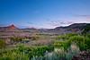 Utah, Zion National Park, LowLandscapeer Kolob Plateau, Landscape,  犹他, 锡安山国家公园