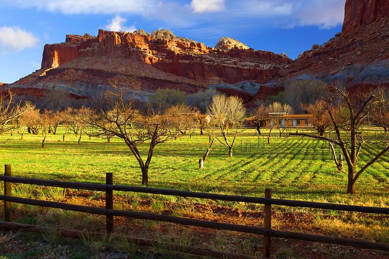 Utah, Capitol Reef National Park, Fruita Oasis, 犹他, 峡谷地国家公园 沙漠
