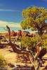 A landscape taken Mar. 31, 2012 in Canyonlands National Park near Moab, UT.