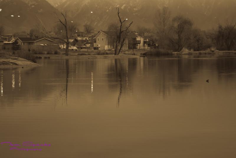 Landscapes-0407